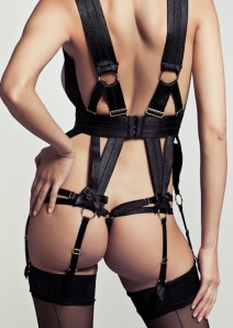 Pleasurements_2908_bordelle-gia-harness-4